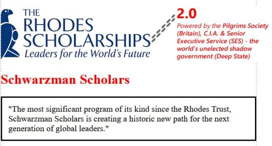 schwarzman scholars 2