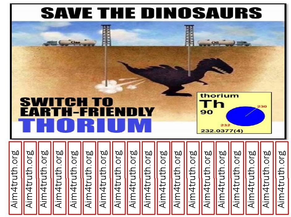 thorium-dinosaur-framed pin up.jpg