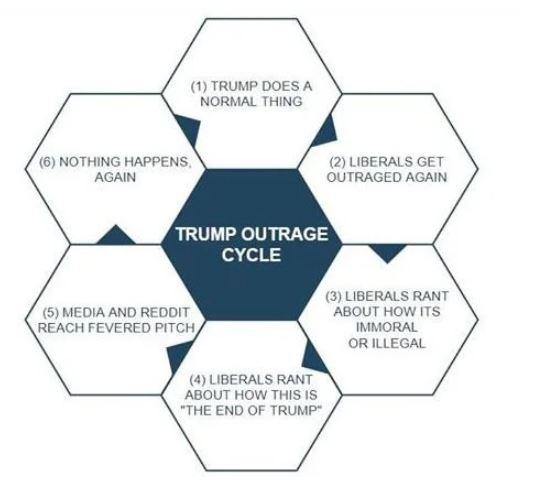 trump cycle