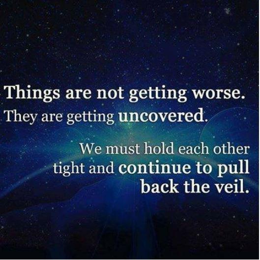 truth veil.JPG