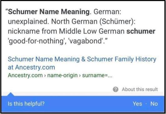 schumer meaning