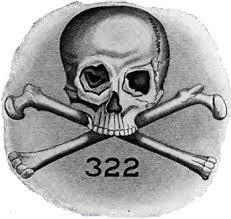 skull bones.jpg