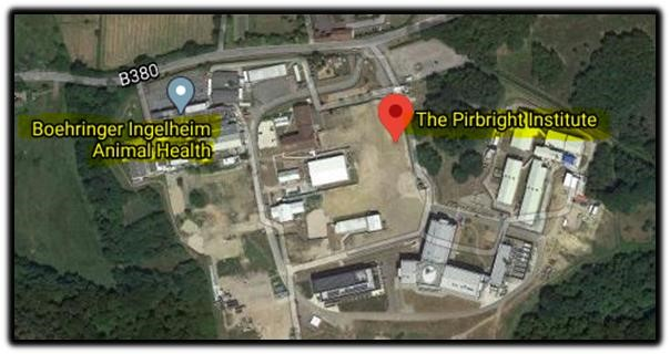 pirbright institute