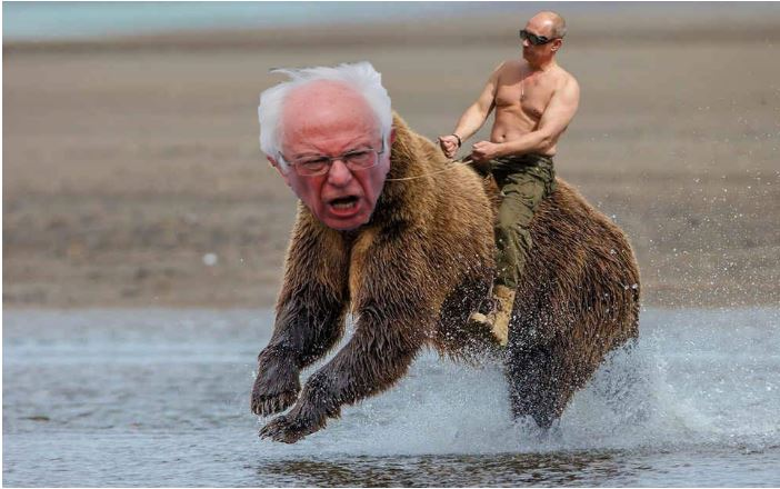 putin sanders bear
