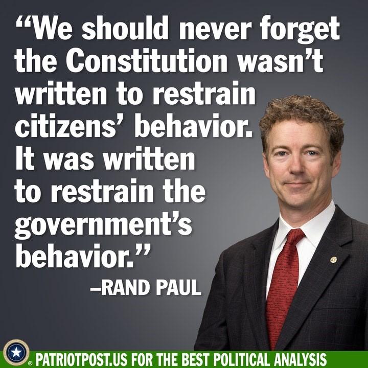 rand paul constitution
