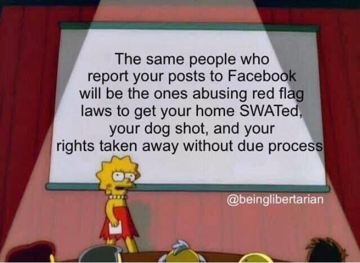 red flag law gun control