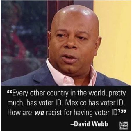 voter id election