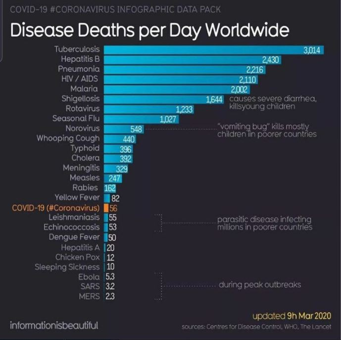 corona virus deaths