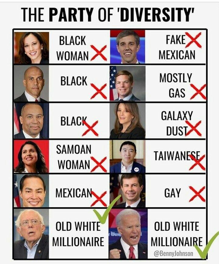 diversity democrats
