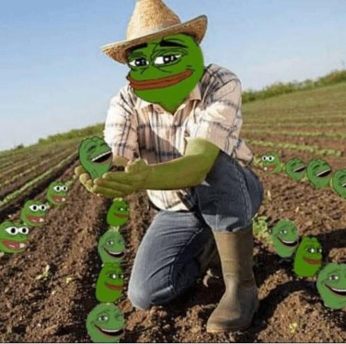meme pepe farmer