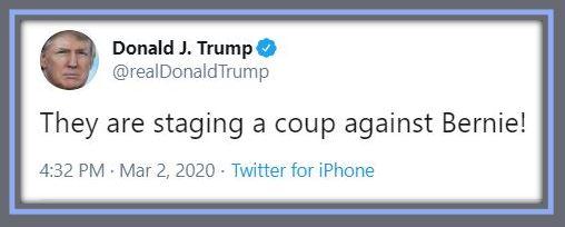 tt bernie coup