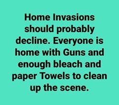 guns bleach toilet paper
